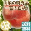 桃 フルーツ Fruits 白桃 特秀 2kg化粧箱 山梨県一宮産 もも 送料無料 産地直送 ギフト