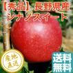シナノスイート りんご フルーツ Fruits 秀品 特選2kg箱 5〜7個入り 長野県産 産地直送 送料無料 人気 ギフト