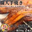 愛知 三河一色産 うなぎ蒲焼き 約250g 2尾 化粧箱入 熨斗対応