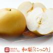 梨 送料無料 贈答用 最上等級 特秀 福島県産 梨 にっこり 3キロ(5〜7玉)