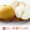 梨 送料無料  贈答用 最上等級 特秀 福島県産 にっこり 4キロ (6〜9玉)