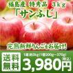 特秀品 福島県産りんご サンふじ 3kg(9玉〜12玉) ご注文時期に合わせて最適な品種を出荷 送料無料 りんご サンふじ 贈答用 ギフト