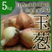 玉ねぎ(無農薬)(送料無料)(和歌山産)5kg