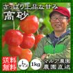 さくらんぼ(高砂) 1kg M、L (送料無料)農園直送