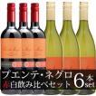 プエンテ ネグロ 750ml (チリワイン)赤 白ワイン飲み比べ6本セット