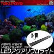 水槽用照明 LEDアクアリウムライト 129連 白/青 90cm〜115cm 長寿命 収縮可能 お気軽に LED900