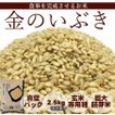 新米 2年産 金のいぶき 2.5kg 玄米  宮城 登米  特別栽培米 農薬・化学肥料不使用 食事を完成させるお米