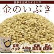 GWは5/3〜5/6までお休み金のいぶき 2.5kg 米 29年 玄米 宮城 登米  特別栽培米 農薬・化学肥料不使用 食事を完成させるお米