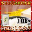 【品質にこだわったお米】新米28年産九州熊本県阿蘇地方産特別栽培米こしひかり10kg/白米/条件付き送料無料/生産者限定米