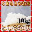 新米29年産九州熊本県産コシヒカリ10kg/白米/5kg×2個/条件付き送料無料
