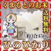 米 450g 九州 熊本県産 ひのひかり お試し米 約3合 新米 令和2年産 送料無料 精白米 くまもとのお米kuma-kome