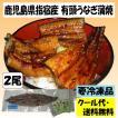 (入荷いたしました!)鹿児島県指宿産 うなぎ蒲焼 有頭Lサイズ(200g以上) 2尾入り クール代・送料無料