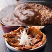 豚丼の具とハンバーグセット  十勝豚肉の絶品ハンバーグ&豚丼 お中元 夏ギフト / ゆたか[冷凍発送]