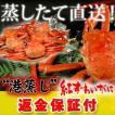 """返金保証付 """"港蒸し""""紅ズワイガニ約1.5kg(300g前..."""