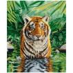 DMCクロスステッチ刺繍キット BK1151 「Tiger Pool」 (虎のプール)