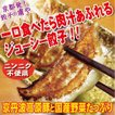 虜や餃子(60個入)【送料無料】