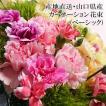 産地直送 数々の賞を受賞した山口県産 カーネーシ ョン 花束 ベーシック(約15本,高さ約25cm)母の日 ギフト