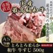 牛肉 国産 和牛 A5 等級 最高級 牛すじ肉 煮込み 牛スジ 500g 大田市場から直送
