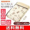 (電気毛布)電気掛け敷き毛布(洗えるブランケット) コイズミ(KOIZUMI) KDK-7548
