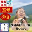 玄米 3kg 茨城県産コシヒカリ 風のひかり