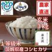 玄米 3kg 茨城県産コシヒカリ 寿米流(すまいる)