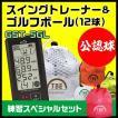 【選べる3色】ゴルフスイングトレーナー GST-5GL&ゴルフボール 飛衛門とびえもん(12個)ゴルフ用品お買い得セット