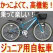 即納可能 子供用自転車 24インチ クロッツ フラッシュバックSTD FBR246STD