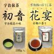 抹茶  宇治抹茶 初音100g ほうじ茶 花宴 8g×12個 セット商品 限定50セット