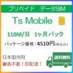 ドコモ 格安SIM プリペイドsim 高速データ容量110M/日1ヶ月プラン(Docomo 格安SIM 1ヶ月パック)