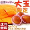 台湾産 大玉 マンゴー 約400g×3玉(合計約1.2kg) 常温または冷蔵 送料無料