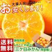 《送料無料》静岡県産 三ケ日みかん...