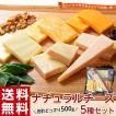チーズ 訳あり 不揃い ナチュラルチーズ5種セット 500...