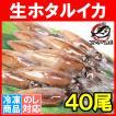 ほたるいか ホタルイカ (刺身用 生ホタルイカ 富山産 40尾)