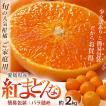 柑橘 みかん 愛媛県産 紅まどんな ...