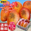 《送料無料》訳有り『沖縄産マンゴ...