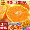 柑橘 デコポン 糖度13度基準 愛媛県...
