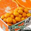 みかん ミカン 糖度12度選別 長崎県産 極甘みかん 味...