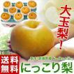 梨 送料無料 栃木県産 にっこり梨 大玉 6~8玉 秀~優...