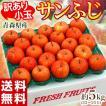 りんご リンゴ 林檎 青森県産 小玉...