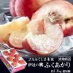JAふくしま未来 新品種 桃 『ふくあかり』 特秀品 約1.7kg 7〜9玉 産地箱 ※常温 送料無料