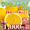 (Fゴ2) 宇和島ゴールド2kg (家庭用・サイズM~2L...
