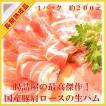 最高級 国産 豚肉 コッパ 肩ロース肉 の 生ハム