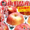 【11月上旬〜日時指定OK】りんご 葉とらずりんご 5kg (秀品/14玉〜20玉入り)
