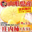 【出荷中】山形県産 柿 庄内柿 3.3kg(秀品/大玉/18玉入り)