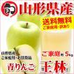 【出荷中】山形県産 ご家庭用 青りんご 王林 5kg(13玉〜22玉入り/生食可)