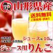 訳あり りんご サンふじ リンゴ ご家庭用 10kg ジュー...