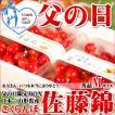 【2021/遅れてごめんね】父の日 さくらんぼ 佐藤錦 700g (秀品/Mサイズ/専用化粧箱入り) 果物 フルーツ ギフト