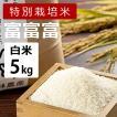 林農産 特別栽培米 富富富 ふふふ (白米・5kg)- 令和元年度