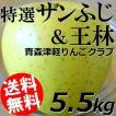 特選サンふじ 王林 5.5kg 12〜18玉 青森津軽りんごくらぶ 年末年始 お正月 送料無料 贈答品 お取り寄せ