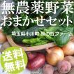 無農薬野菜 詰め合わせ おまかせセット 5〜9品 埼玉県小川町 風の丘ファーム 送料無料 お取り寄せ